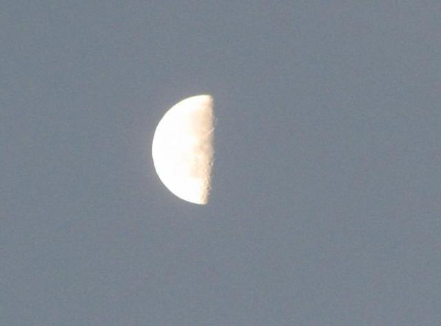 20070111朝の月