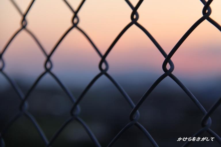 フェンス越しの夕焼け