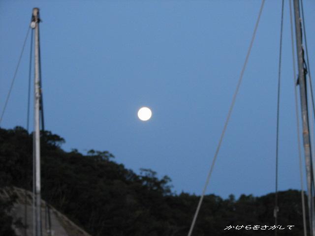 夜明けの海で 十六夜の月